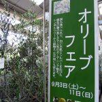 サカタのタネ直営のガーデンセンター横浜のオリーブフェア