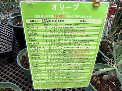 比較的入荷の多い品種のリスト