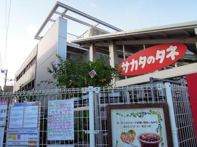 サカタのタネ直営、日本最大級の園芸専門店・ガーデンセンター横浜