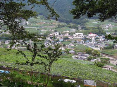 ぶどうの丘から勝沼ぶどう郷駅方向の眺め