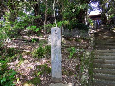 天然記念物 西明寺の椎林叢