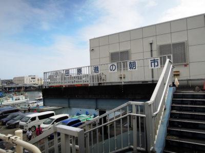 小田原港朝市の会場になっている建物
