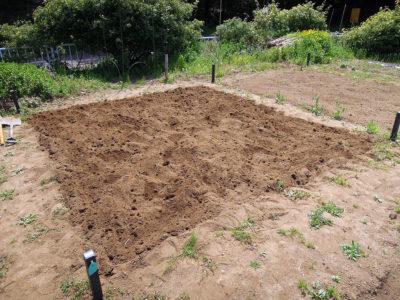 畑全体を耕して、初日の作業終了