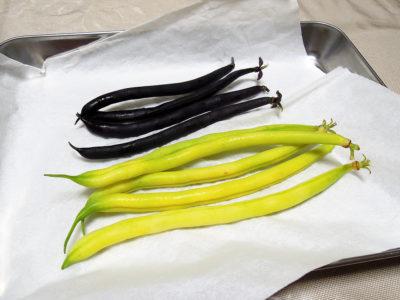 最初の収穫でとれた2色のファジョリーニ・ミスティ