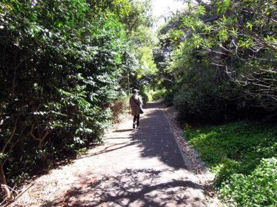 ウオッセ21の裏手にある夫婦ヶ鼻公園を経由して県道に出る