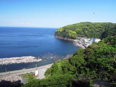山側の県道から琴ヶ浜方向の眺め