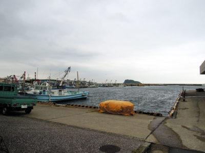 送迎バス乗降場の前は新安浦港