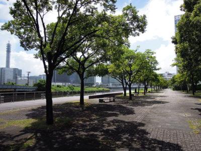 ポートサイド公園から横浜駅方向の風景