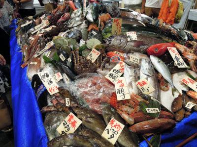 全国各地から集められた魚介の展示