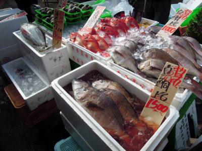 朝市会場で売っていた鮮魚