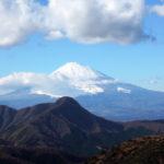 2019年晩秋の低山歩き:久しぶりに箱根の明神ヶ岳に登って山頂から富士山を眺め、下山後は小田原の湘南大衆横丁で魚介や大山鶏を味わう