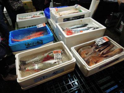 山本水産に並んでいた鮮魚