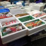 今年最初の一般開放日に横浜中央卸売市場の水産物部に行き、牡蠣や鯛の切り落とし、すずきなどを買い、飲食街のカネセイでお刺身丼をいただく