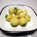 毎年最初に熟すワイルドストロベリーの白実を収穫し、ヨーグルトにのせて梅べにすをかけていただく