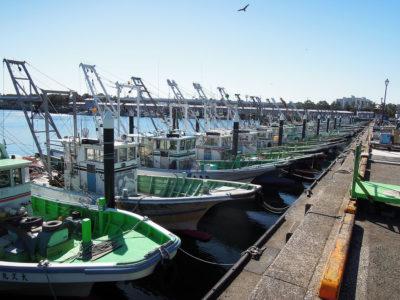 柴漁港に到着