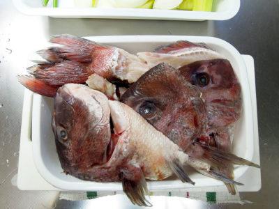 横浜中央卸売市場の魚竜で購入した鯛の頭と中骨