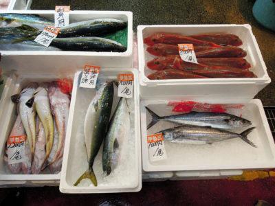 伊勢三の店先に並ぶ鮮魚