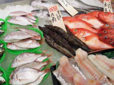 神水産の鮮魚、目をつけたのは八角