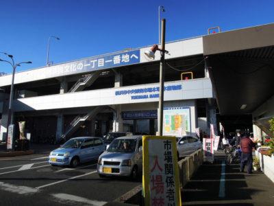 横浜中央卸売市場・水産物部に到着