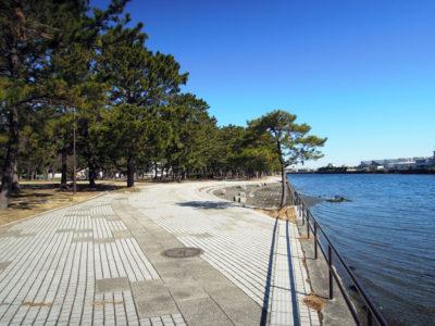公園に入り、野島海岸沿いに進む