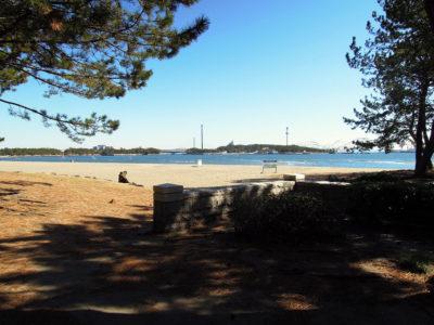 砂浜と緑が広がる海の公園に到着