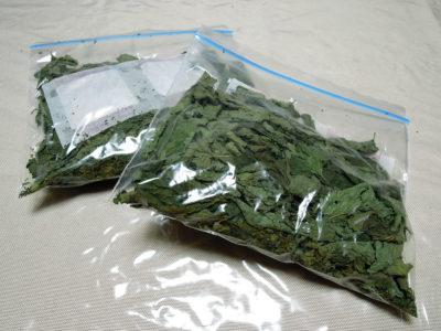 乾燥した葉を乾燥剤とともに保存袋に入れ冷蔵庫で保存