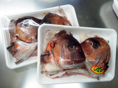 弘明寺商店街の作清で買ってきた鯛のあら