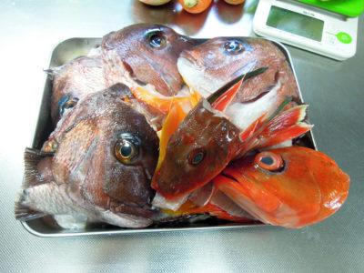 魚のブイヨンをつくる材料の鯛とほうぼうとあかはたのあら