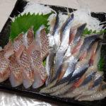 石川の地酒、宗玄 純米 八反錦 無濾過生原酒の燗で鯛の炙りとさんまの刺身、さんまの塩焼き、鯛めしをいただく