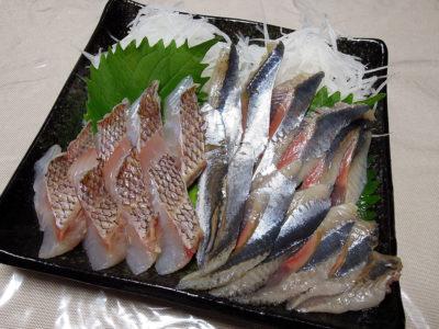 鯛の炙りとさんまの刺身