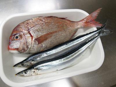 弘明寺商店街の作清で購入した天然鯛とさんま