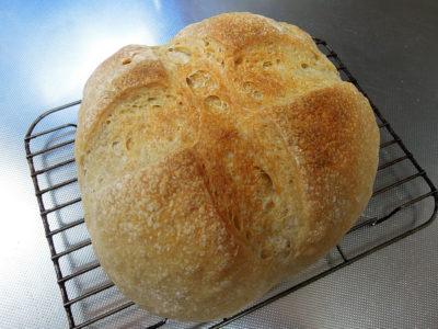 レーズン酵母の中種を使って最初に焼いたパン