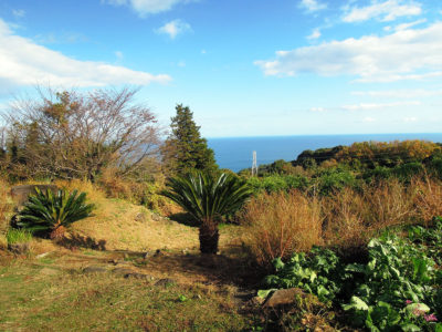 ヨロイヅカファームから眺める相模湾