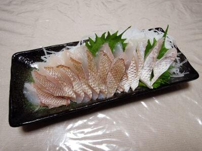 天然鯛の炙り刺身