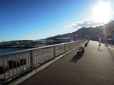 整備された遊歩道を通って漁港の駅TOTOCO小田原に向かう
