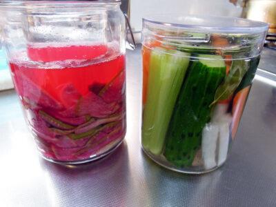 発酵紅芯大根の漬け汁をスターターにしてピクルスを仕込んでみる