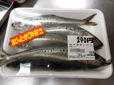 横浜橋商店街の黒潮で購入した銚子港産のいわし