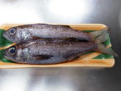 近所のスーパーで購入した長崎県産の黒むつ