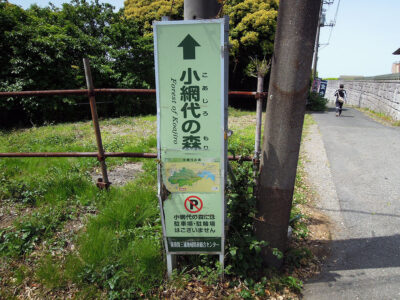 引橋バス停の手前で右折し、舗装路を進む