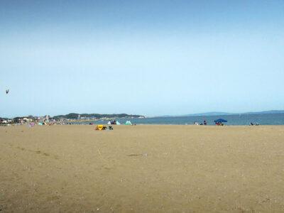 久しぶりに見る三浦海岸